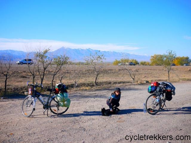 Cycling Kazakhstan, injured animal