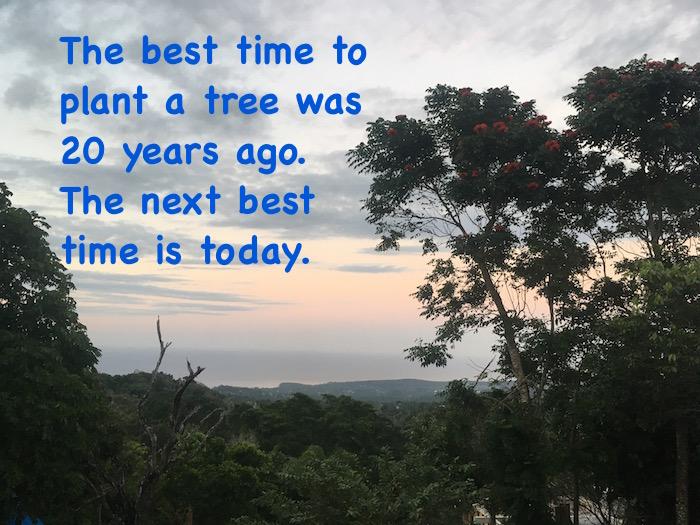ecotourism jamaica
