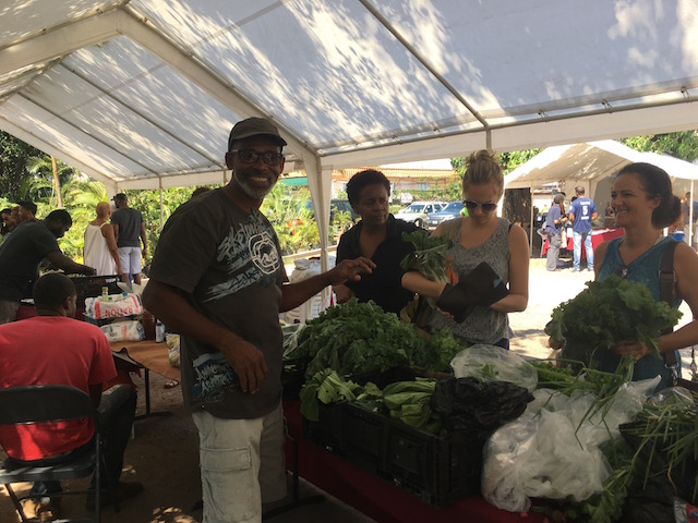 Organic markets in Kingston