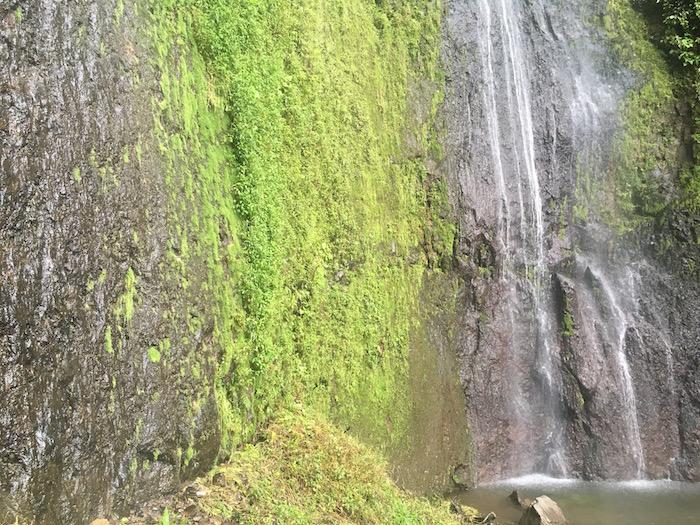 The San Ramon Waterfall ecotourism in nicaragua
